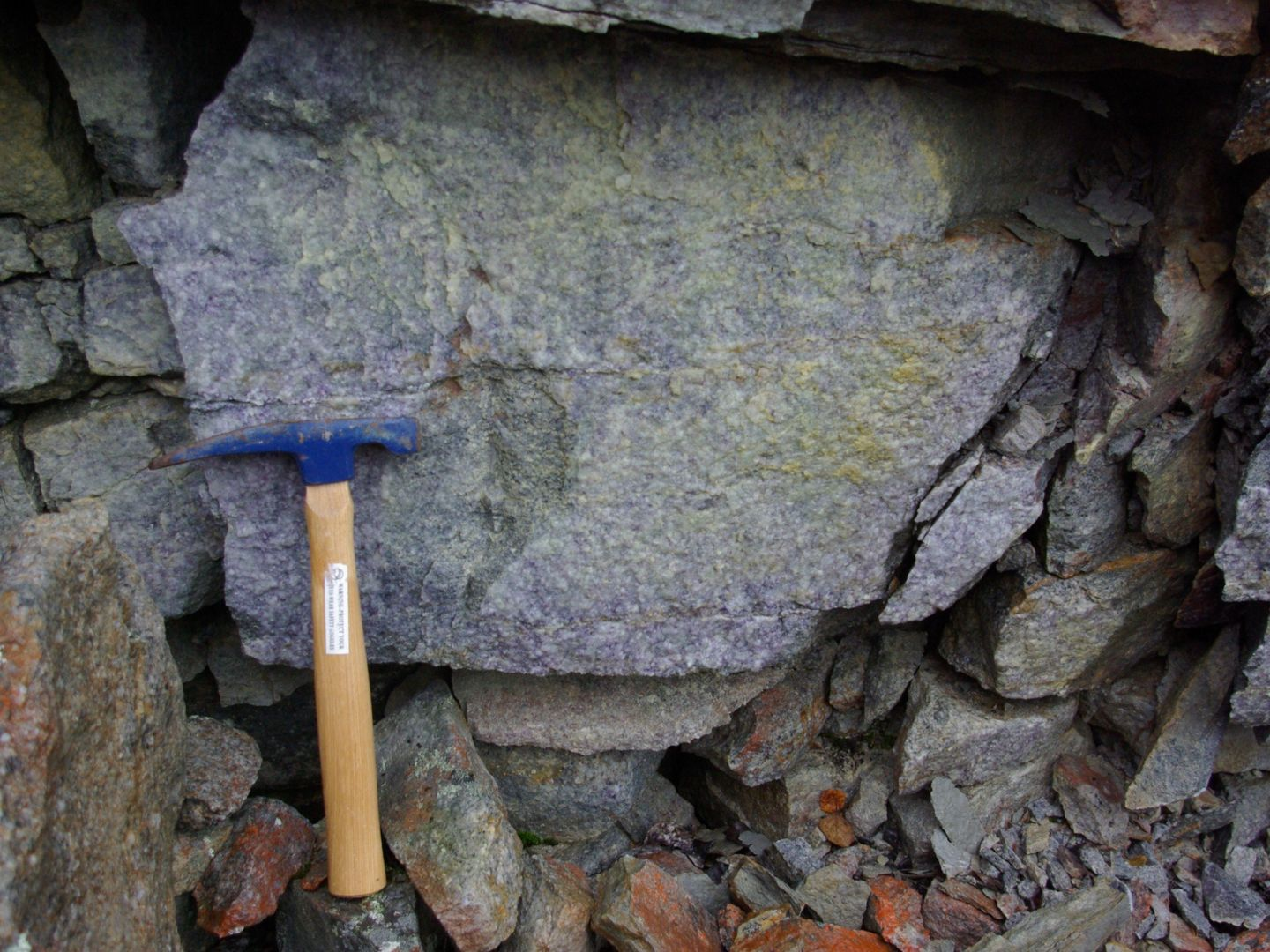Mineralisation in Close up
